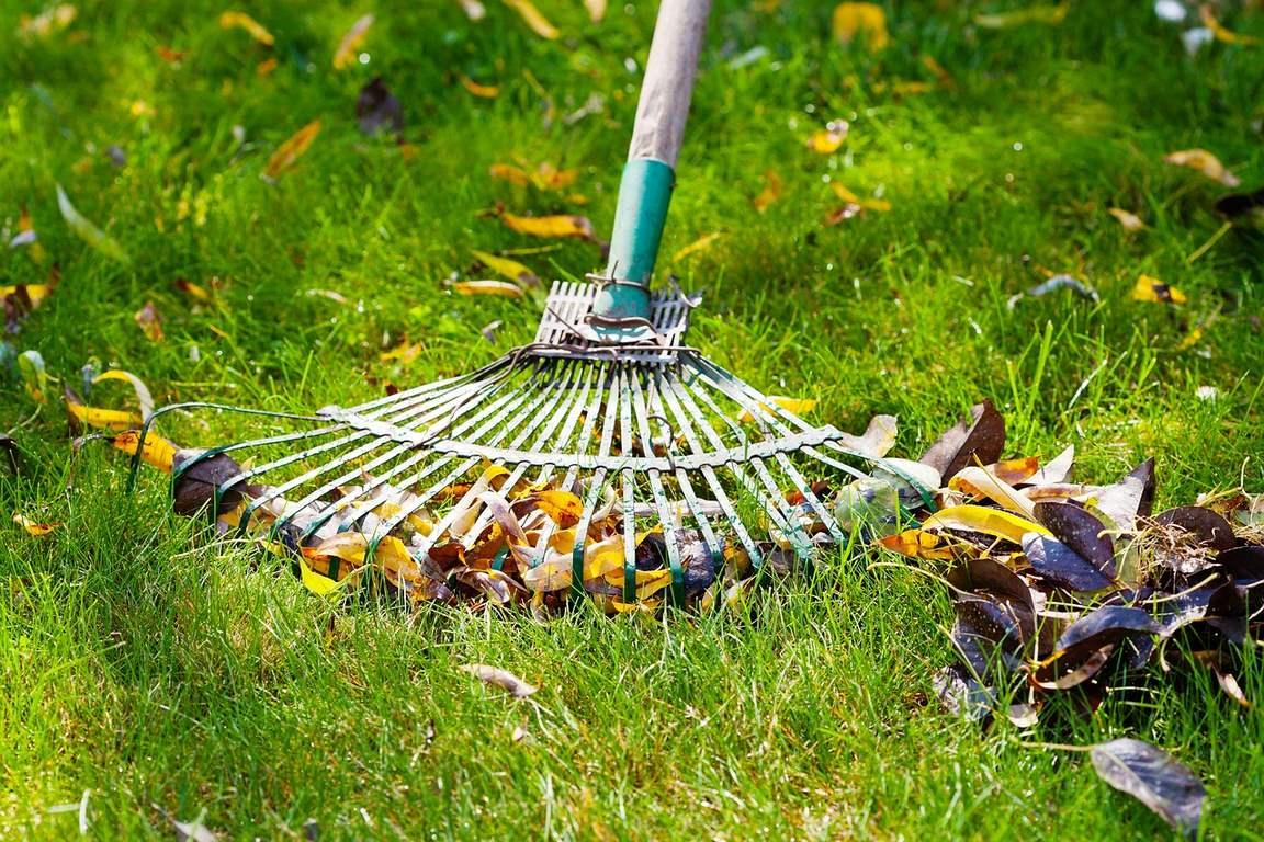 Periodic Lawn Maintenance