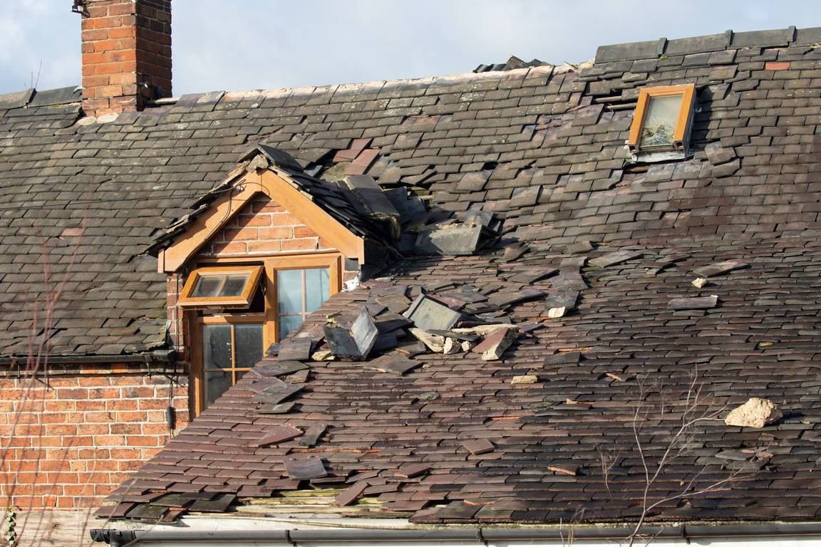 image - You Haven't Touched Your Roof in A Long Time