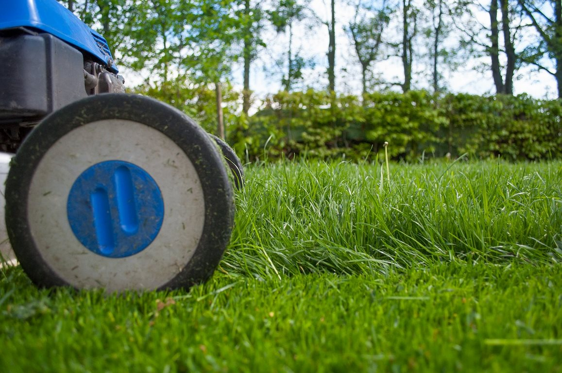 Tips For Keeping Up with Lawn Maintenance