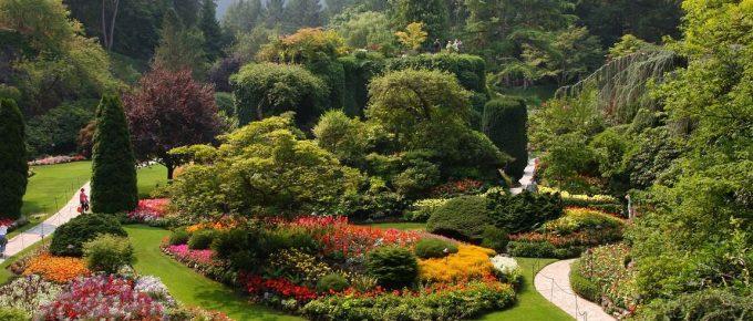 4 Easy Rental Property Summer Landscaping Tips