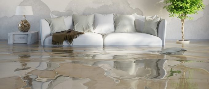 Top 12 Tips to Know When Finding Water Damage Restoration Company