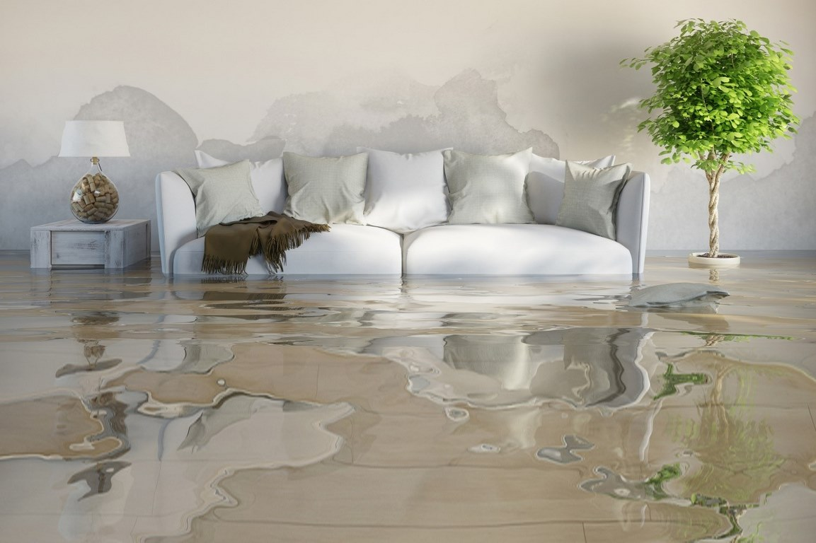 image - Top 12 Tips to Know When Finding Water Damage Restoration Company