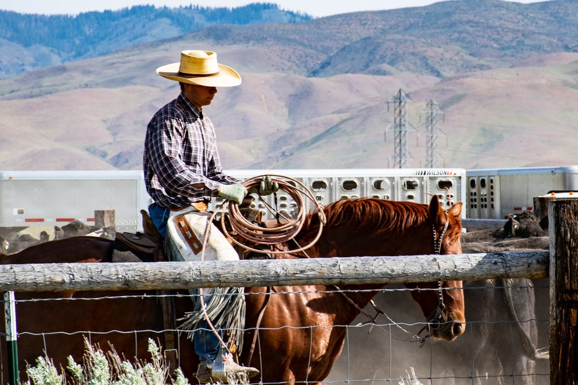 image - Wearing a Cowboy Hat – How to Go About It?