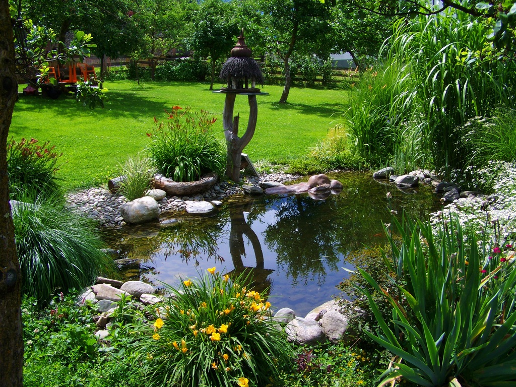 image - Check Out 7 Low Water Landscaping Ideas for a Beautiful and Sustainable Yard