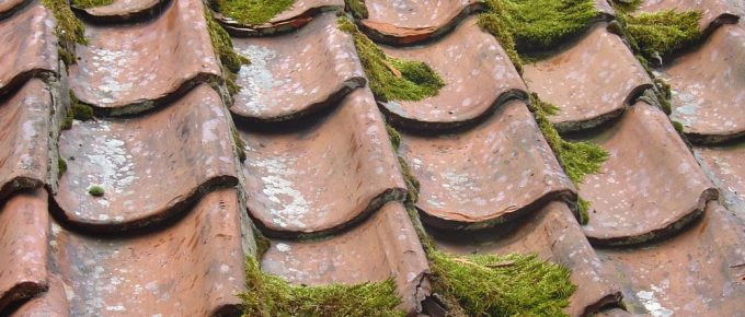 Tell-Tale Signs That Your Roof is Leaking
