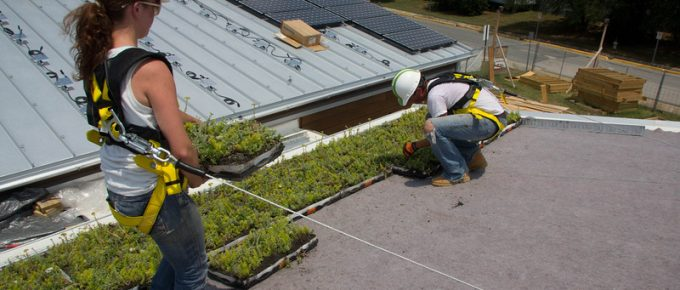 Three Benefits o 'Going Green' In Roofing and Contracting
