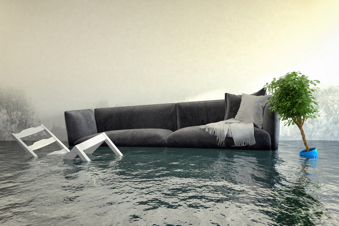 image - What Happens Throughout the Water Damage Removal Process?